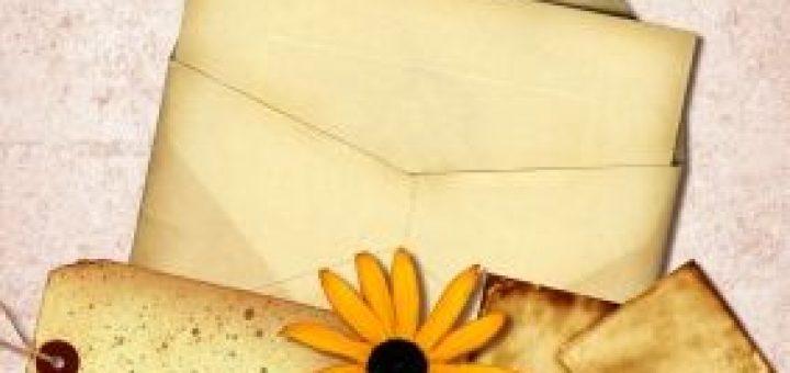 Email Newsletter erstellen macht Spass